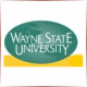 Wayne State University - Theatre School Ranking